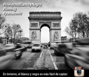 Invierno Blanco y Negro