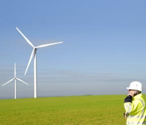 trabajo en el sector verde