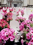 Girona-temps-de-flors-panasonic