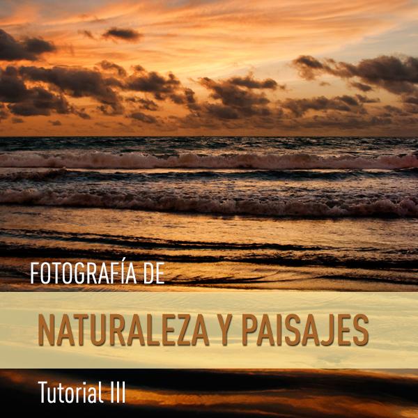 Trucos para realizar fotografías de Naturaleza y Paisajes (III): MOVIMIENTO Y COLOR DE LA LUZ NATURAL