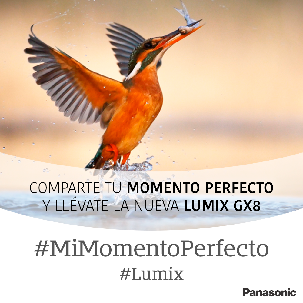 Concurso Instagram #MiMomentoPerfecto: gana una Lumix GX8 o una Lumix TZ80