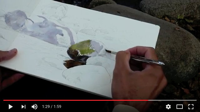 Dibujando la Naturaleza con una Lumix FZ72