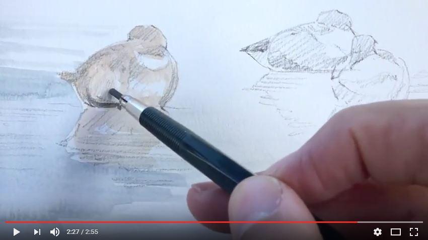 Capturando las aves con el zoom de la Lumix FZ72