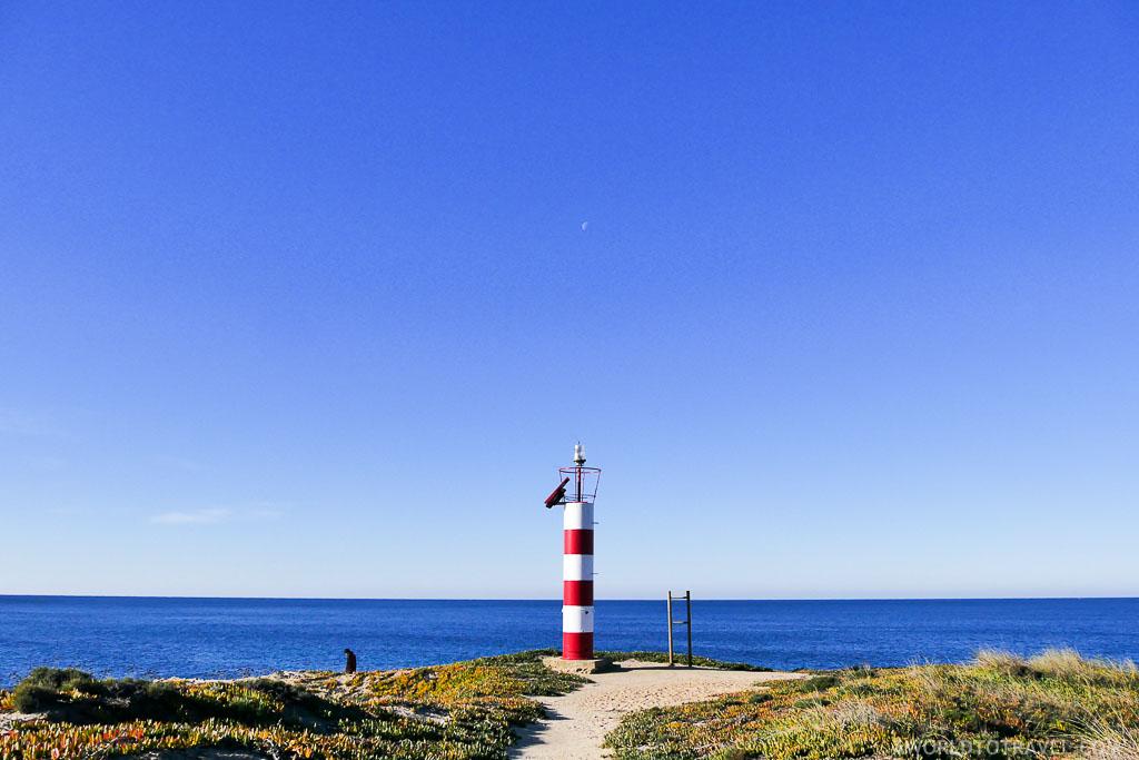 La ruta del pescado: Un paseo por la gastronomía y los paisajes del Alentejo portugués