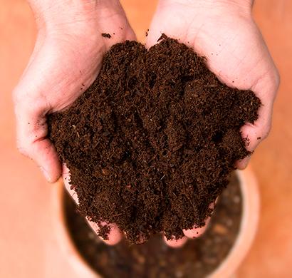 Hacer compost. Transformar un problema en solución