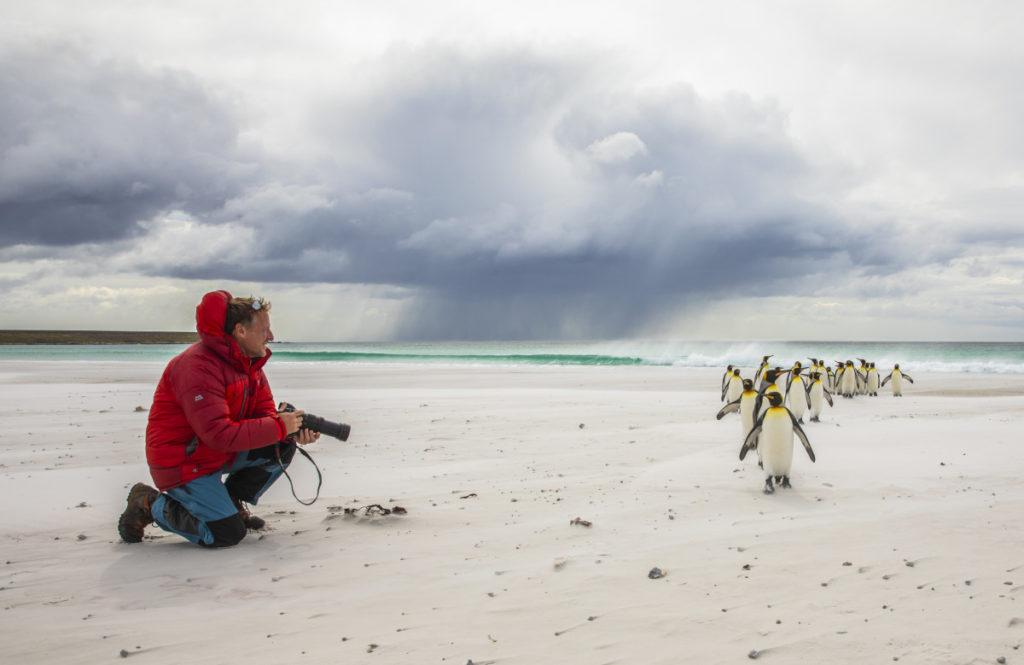 Iñaki Relanzón con su Lumix G9 frente a un grupo de pingüinos rey.